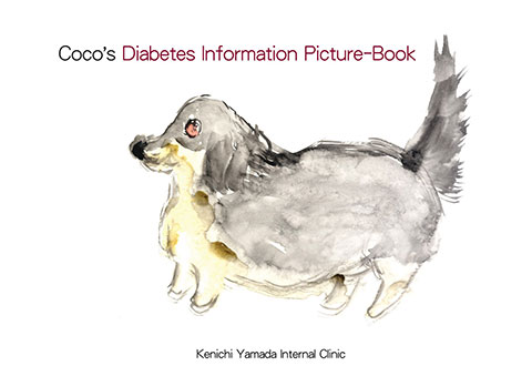 Coco's Diabetes Information Picture Book